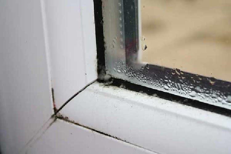 Качественные пластиковые окна значительно превосходят деревянные аналоги по многим показателям