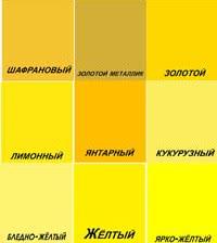 Фото красивых цветов желтого цвета