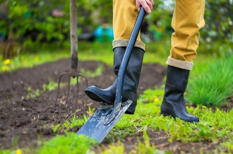 Выбор лопаты